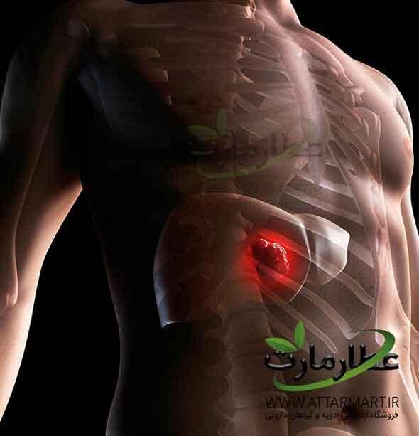 وظایف کبد، درمان کبد چرب و علائم سرطان کبد