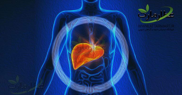 15 ادویه و گیاه دارویی برای پاکسازی و درمان کبد چرب
