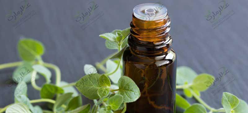 خواص روغن پونه کوهی: برای عفونت، قارچ و درمان سرماخوردگی
