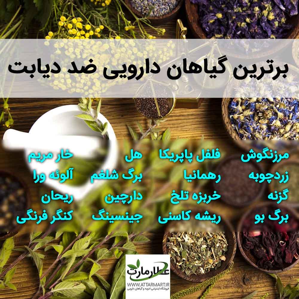 گیاهان دارویی ضد دیابت