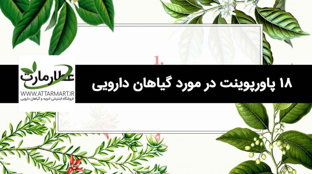 18 پاورپوینت برتر در مورد گیاهان دارویی