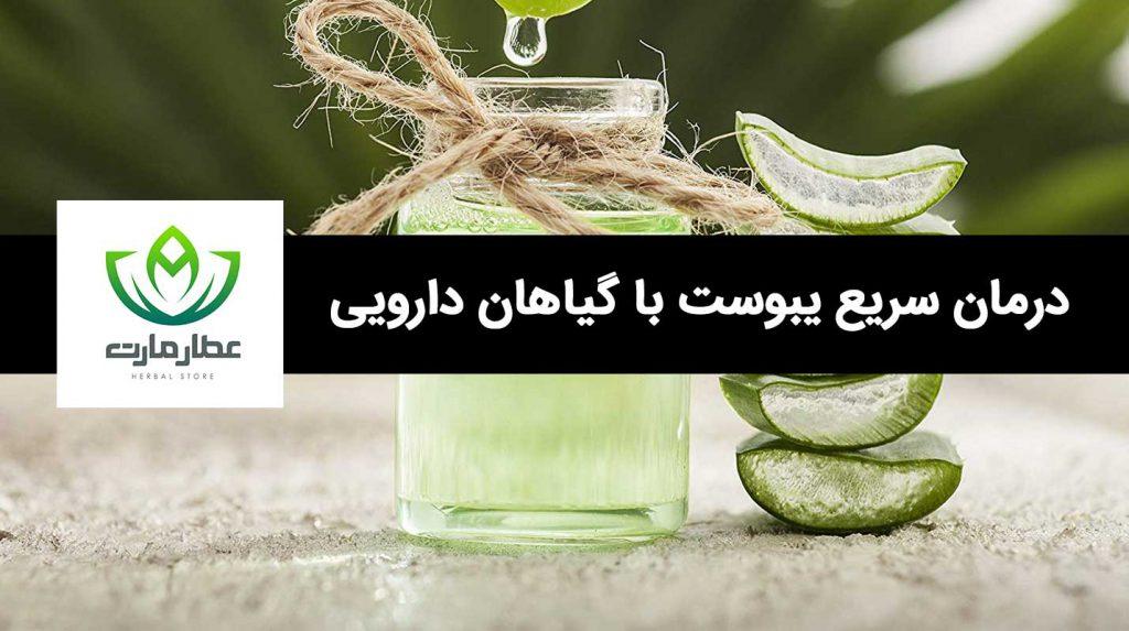 درمان سریع یبوست با گیاهان دارویی در منزل