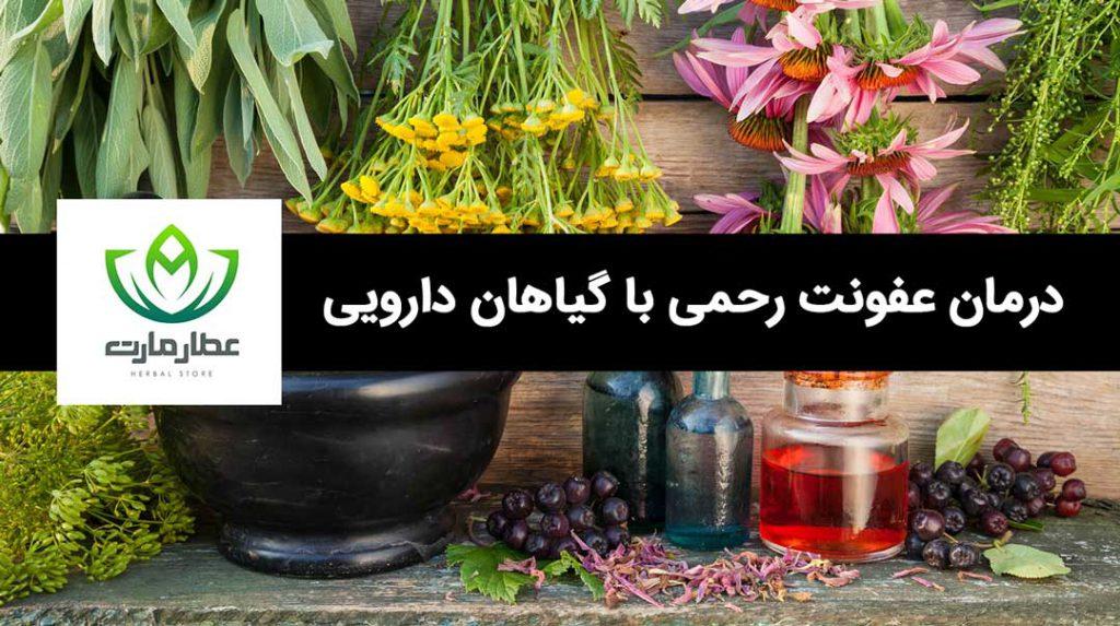 درمان عفونت رحمی با گیاهان دارویی