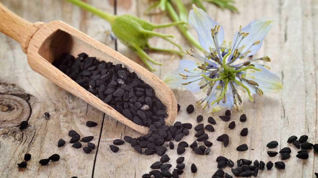 چه مقدار سیاه دانه مصرف کنیم؟