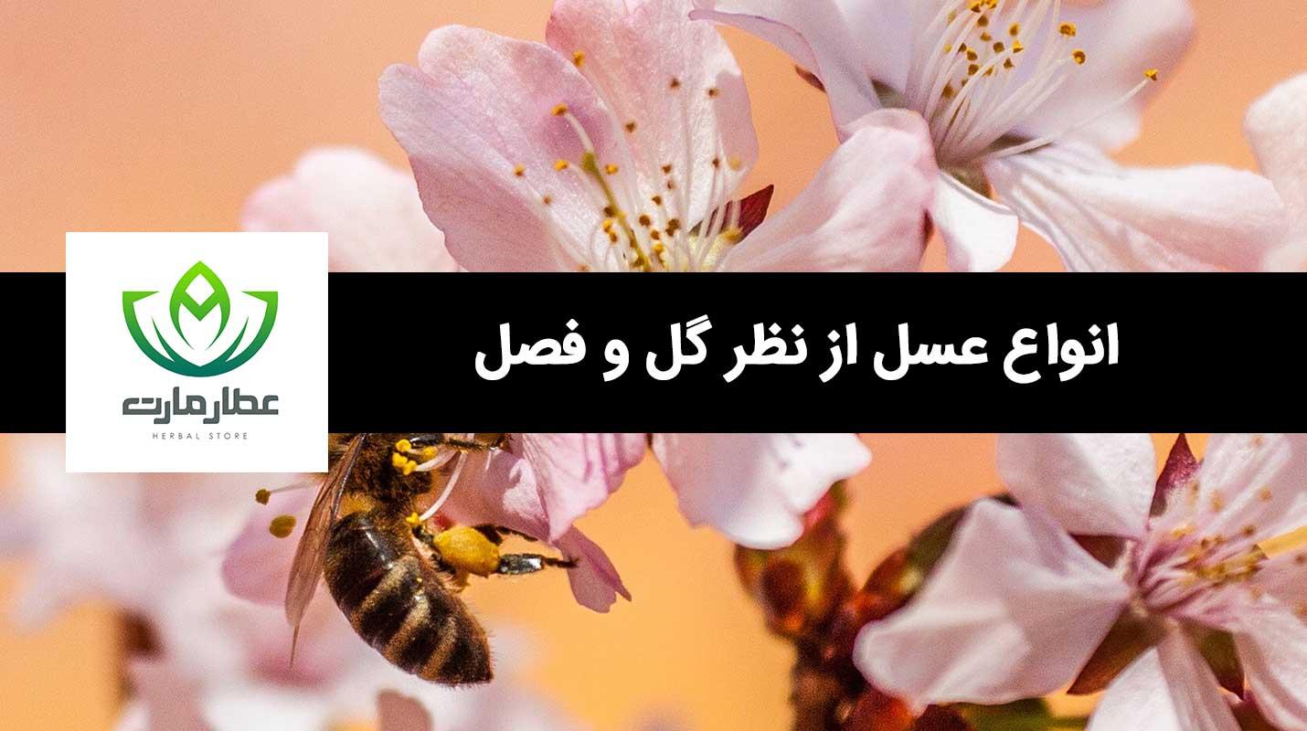 انواع عسل را می توان بر اساس گل و فصل تقسیم بندی نمود.